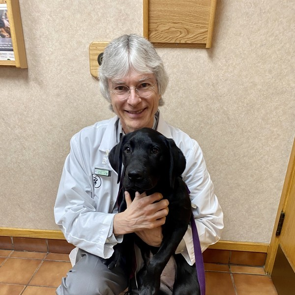Dr. McBride with a patient. Veterinarians in Michigan can now discuss CBD for pets.