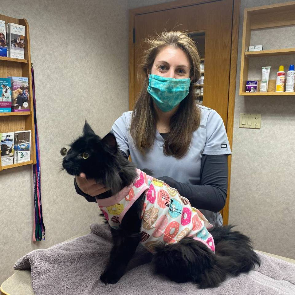 Dr. Grimes of Grand Rapids veterinarian Cascade Hospital for Animals with diabetic cat Max.